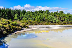 The Artist's Palette in the Wai-o-tapu geothermal area, near Rot Royalty Free Stock Photos