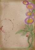 Artist sketch: hand drawing of flowers Royalty Free Stock Images