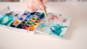 Artist watercolor painting box hand mixing colors