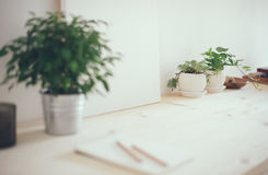 Artist& x27 dei pantaloni a vita bassa; area di lavoro, piante e tela di s Fotografia Stock