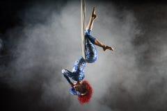 Artista aéreo 'sexy' atlético do circo com o ruivo no traje azul que faz truques na seda aérea imagens de stock royalty free