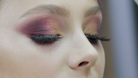 Artista de maquillaje que hace a la chica joven profesional del maquillaje en un salón de belleza almacen de metraje de vídeo