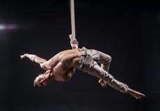 Artista do circo no homem aéreo das correias Fotos de Stock