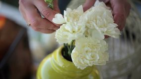 Artista floral que adorna la tabla con las flores almacen de video