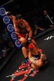 Artista marcial misturado de Dominic Warr Fotografia de Stock