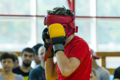 Artista marcial misturado em luvas Fotos de Stock Royalty Free