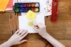 Artista profesional que pinta un crisantemo Imagen de archivo libre de regalías