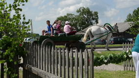 Artiste de touristes de chariot clips vidéos