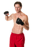 Artiste martial Photo libre de droits