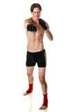 Artiste martial Photos stock