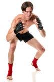 Artiste martial Photographie stock