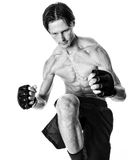 Artiste martial Image libre de droits
