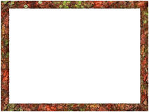 Artistic Abstract Foliage Frame Royalty Free Stock Image