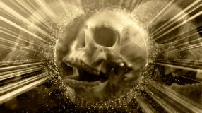 Artistic Abstract Terrifying Vintage Glowing Skull royalty free stock photography