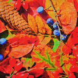 Artistic altered picture of colorful autumn foliage Royalty Free Stock Photos