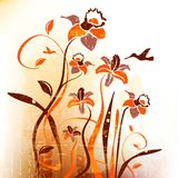 Artistic, autumn, backdrop, background, bouquet, Royalty Free Stock Images