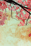 Artistic background with autumn leaves Royalty Free Stock Image