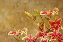 Artistic background of flowers Stock Photos