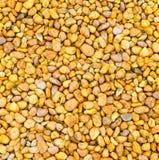 Artistic background of pebbles orange Stock Photography