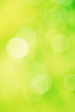 Artistic background yellow bokeh blurred foliage Stock Photography