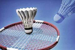 Colorful abstract badminton racket and shuttlecock sky blue. Stock Images