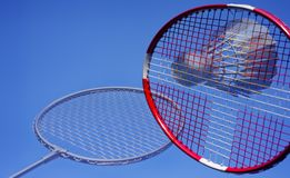 Artistic badminton action royalty free stock image
