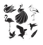 Artistic birds. Vector art in Adobe illustrator EPS Royalty Free Stock Photography