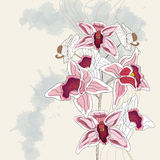 Artistic branch of orchid. With space for text - layer separated in vector file - easily editable Stock Photos