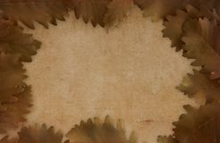 Artistic brown background Stock Photography