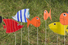 Artistic and colored fish Stock Image