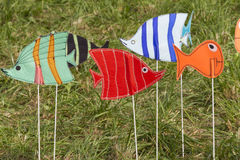 Artistic and colored fish Royalty Free Stock Photos