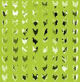 Artistic colorful background with chickens Stock Photography