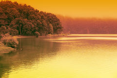 Artistic colorful landscape of forest lake Stock Images