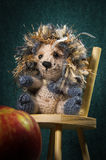 Artistic compositions with knitted animals. Crew cut royalty free stock images