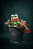 Artistic compositions with knitted animals. Frogs stock photography