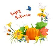 Vector Autumn Card Stock Photos