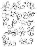 Artistic curl elements Stock Images