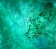 Artistic Digital Animal On a Foggy Colorful Background. Artistic digitally created animal`s face in a smoky glorified colorful background vector illustration