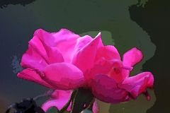 ARTISTIC EFFECT ON IMAGE OF PINK ROSE royalty free stock photo