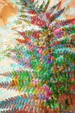 Artistic, floral background with colorful fern leaf Royalty Free Stock Images