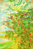 Artistic, floral background with colorful fern leaf Royalty Free Stock Photos