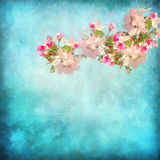 Artistic floral background Royalty Free Stock Photo