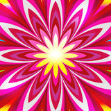 Artistic flower. Artistic abstract colourful flower background Royalty Free Stock Photography