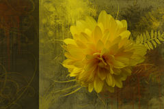 Artistic flower background. Artistic yellow flower background, greeting card Stock Photography