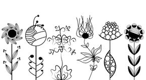 Artistic flowers set. A collection of hand drawn fully editable line of flowers Royalty Free Stock Image