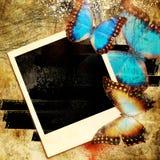 Artistic frame Stock Image