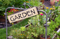 Artistic Garden. Two raised garden beds filled with flowers and vegetables are nestled in small backyard. A delightful rustic sign hanging jauntily on a recycled Royalty Free Stock Images