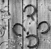 Artistic Horseshoes Stock Image