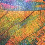 Artistic leaf. Colorful dry leaf texture and background stock illustration