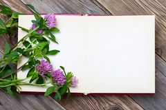 Artistic mockup with open sketchbook blank Royalty Free Stock Photos